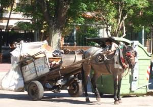 Photo Horse pulling scavenger's cart - Montevideo, Uruguay, 2007