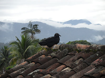 Paraty, Brazil, 2012