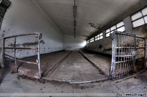 Pen in abandoned slaughterhouse - Figline Valdarno, Italy, 2011 (Photo: Pietromassimo Pasqui https://www.facebook.com/PigeoneyesPh)